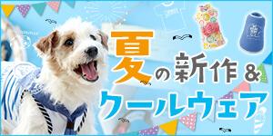 夏の新作&クールウェア入荷!