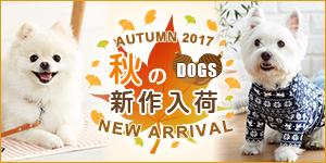 わんちゃん☆秋の新商品