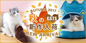 ねこちゃん☆秋の新商品