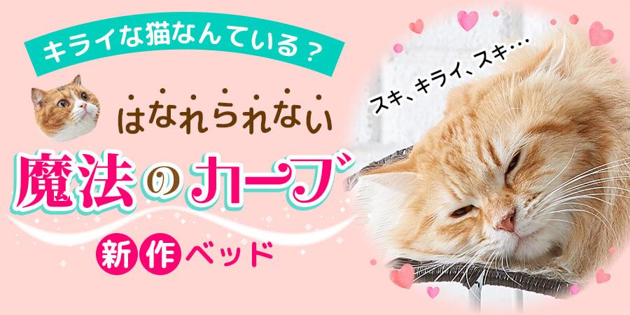 猫ベッド特集