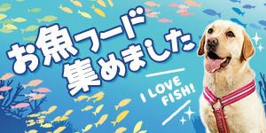お魚好きなわんこたちへ