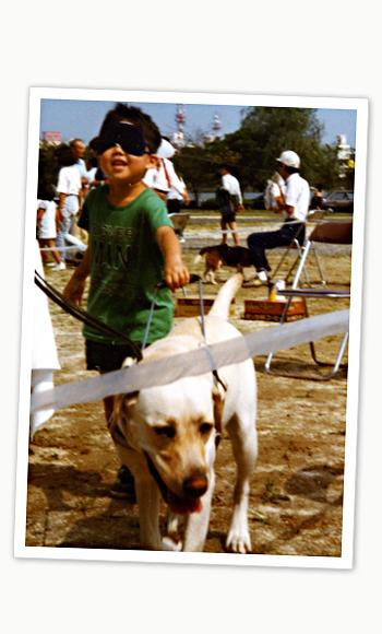 盲導犬体験歩行イベント