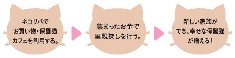 自走型保護猫カフェ