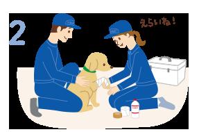 動物病院への搬送をサポート