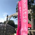 鳥取・アミティエフェスティバル