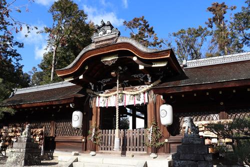 猫がいる神社『梅宮大社』~京都の旅 Part.2~