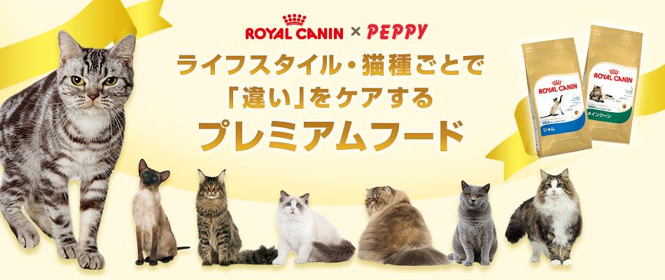 【ロイヤルカナン】ライフスタイル・猫種ごとで違いをケアするプレミアムフード