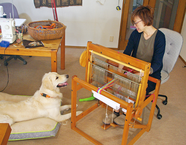 おしゃれで耐久性に優れた手作り犬具