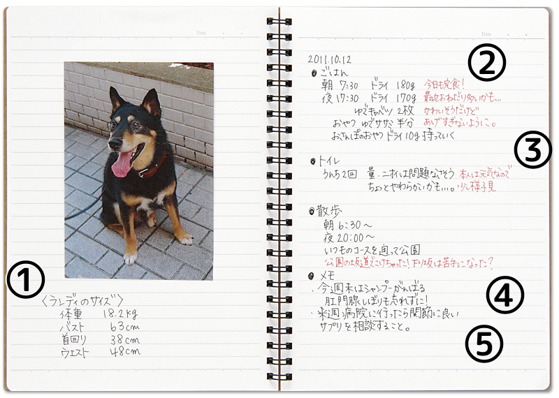 愛犬の記録帳見本