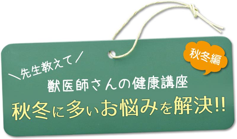 先生教えて!獣医師さんの健康講座/秋冬に多いお悩みを解決!