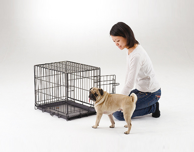 愛犬をケージに慣れさせる方法