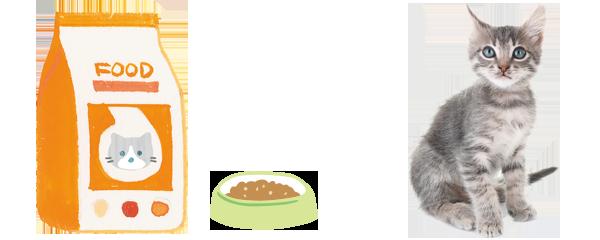 子猫のライフステージに合った栄養バランスの総合栄養食とは?