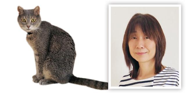 クウ動物病院勤務の愛猫家田中玲子さん
