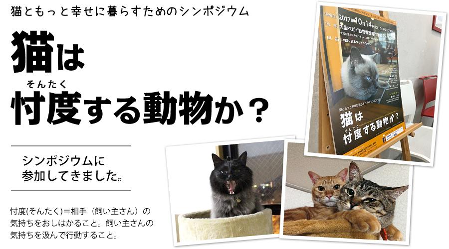 猫は忖度(そんたく)する動物か?
