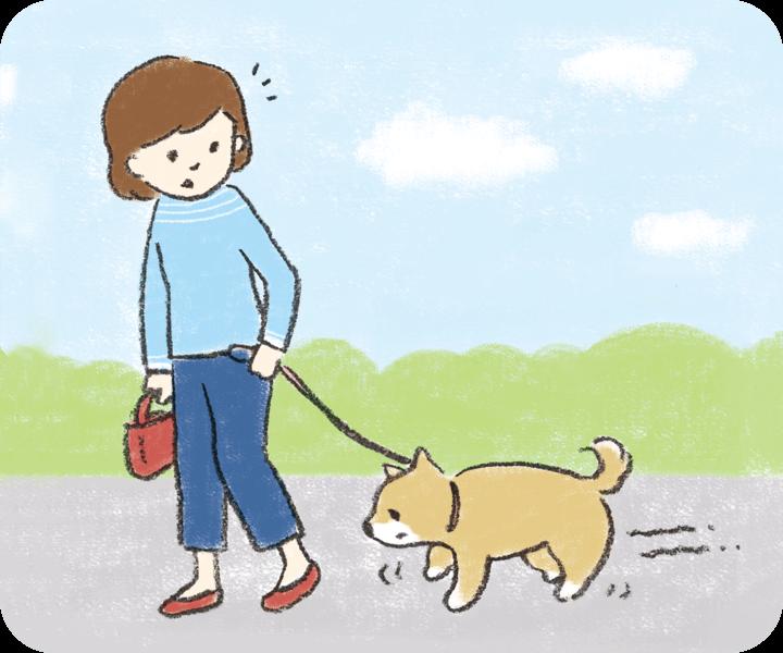 犬がよろよろ歩く