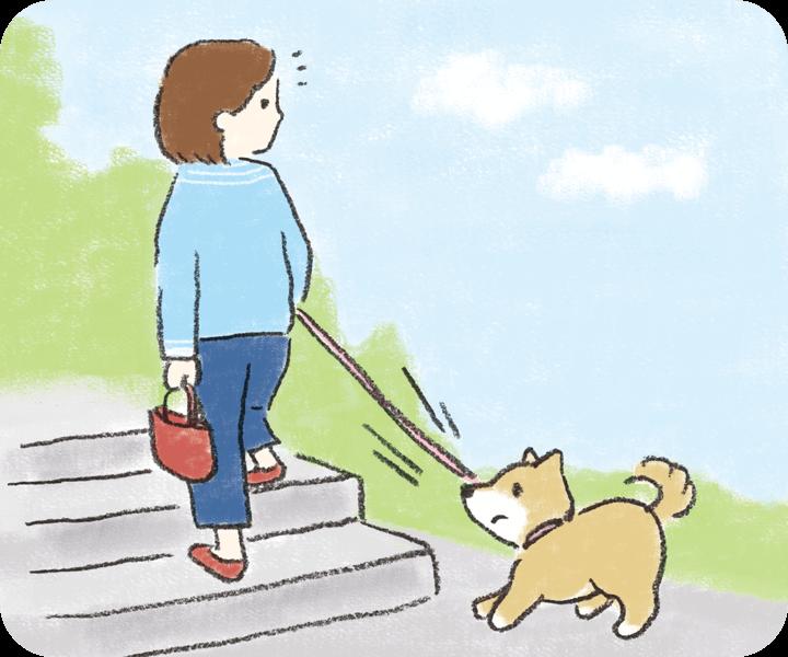 犬が段差を上がり降りするのを嫌がる