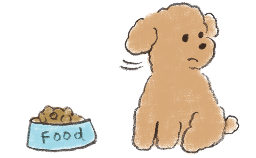 犬がごはんを食べない、食欲がない