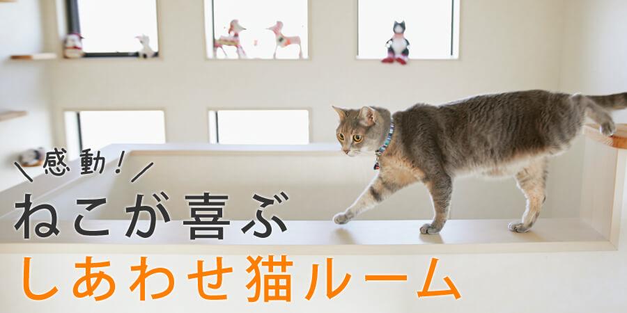 感動!ねこが喜ぶしあわせ猫ルーム