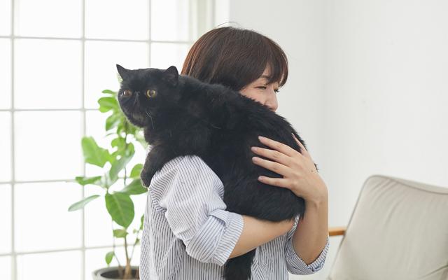 肩と体、手で猫の脇とおしりをしっかり支える