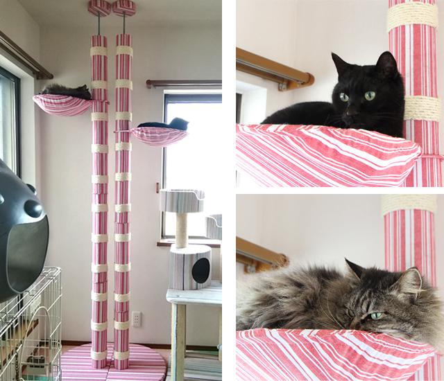愛猫部屋の工夫
