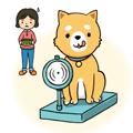 犬の肥満について知りたい!