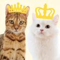 我が家のプリンス&プリンセスに愛を伝えたい!