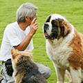 人と動物のより良い出会いと暮らしのために。