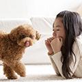 マンション&アパート(集合住宅)で犬と暮らすためには?~人が守るべきルールとマナー、適した犬とは?~