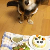 阪急ハロードッグ わんちゃんのヘルシー惣菜