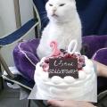 20歳♪(*´∀`)♪