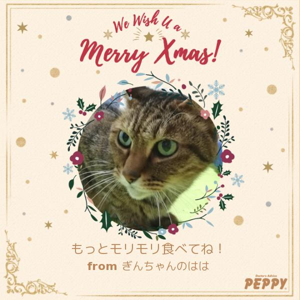 https://peppynet.s3.amazonaws.com/upload/web/special/14587/peppycard_xmas2019_14587.jpg