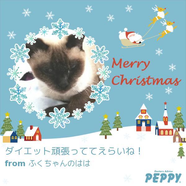 https://peppynet.s3.amazonaws.com/upload/web/special/14594/peppycard_xmas2019_14594.jpg