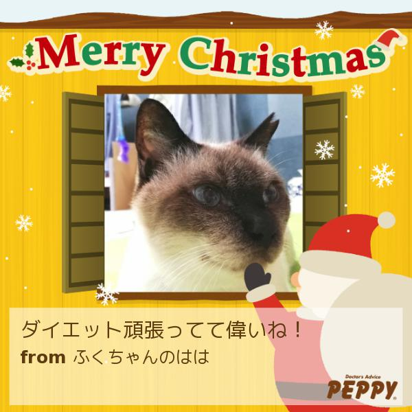 https://peppynet.s3.amazonaws.com/upload/web/special/14905/peppycard_xmas2019_14905.jpg